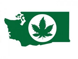 marijuana licensing requirements in washington