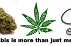 Cannabis Business Education