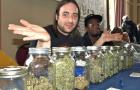 Marijuana Expo