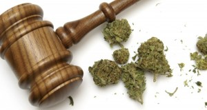 Cannabis business attorney