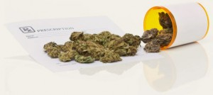 law firm dispensary