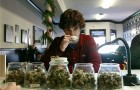 Accounting for marijuana business