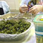 California cannabis university1