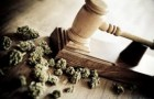 Dispensary business law firm
