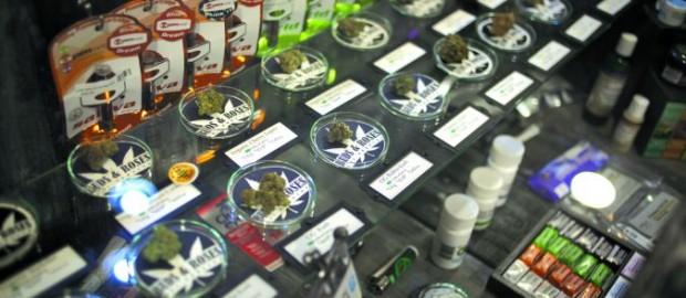 Marijuana business school