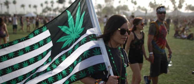 Cannabis events